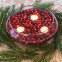 Cranberry Centerpiece - It's A Delight.com