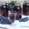 Grape Juice - It's A Delight.com